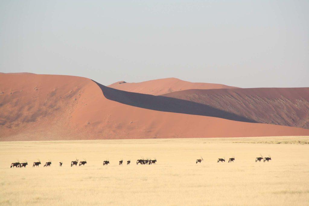 Farbspiel 2 Namibia